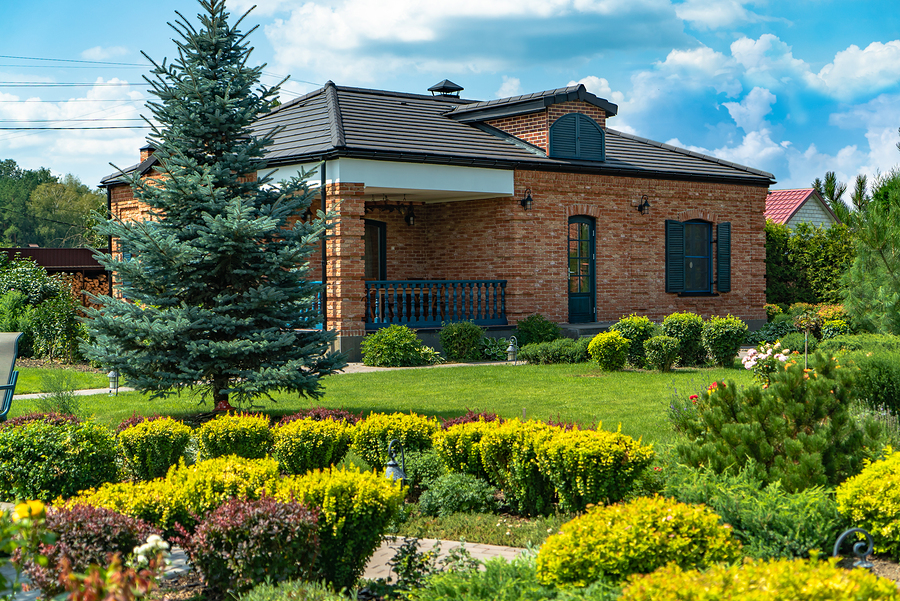 Make Your Front Yard And Backyard More Beautiful